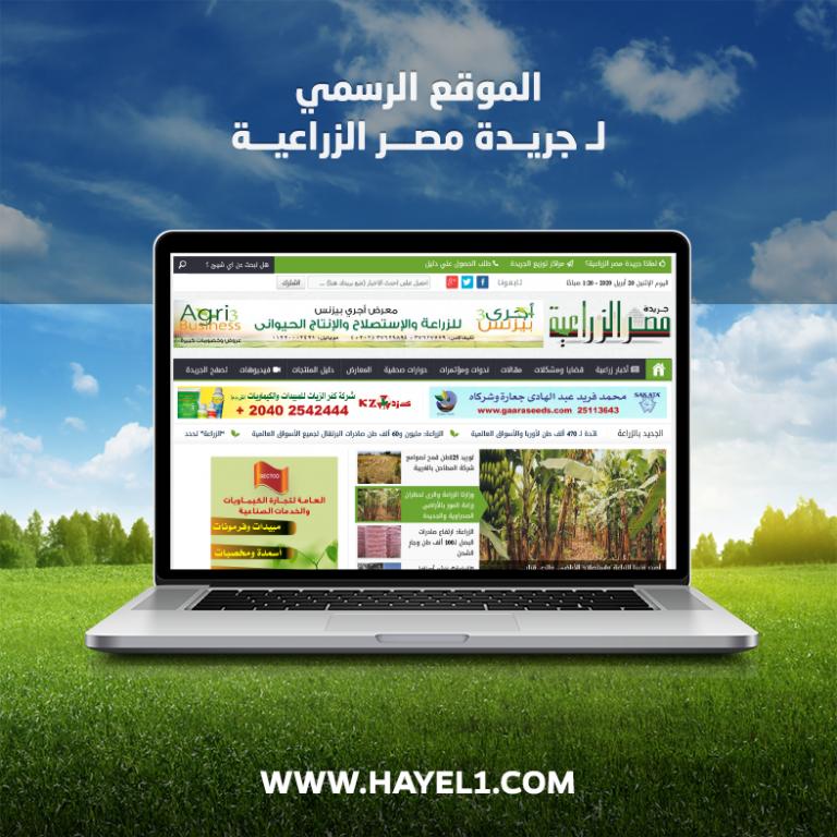 Egy Agricultural Newspaper – website design